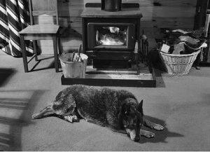 Wood Heaters | Geelong | Torquay | Barwon Heads | Ocean Grove | Tomlinson Plumbing