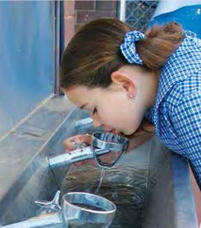 School bubbler taps | Tomlinson Plumbing | Geelong | Torquay | Barwon Heads | Ocean Grove