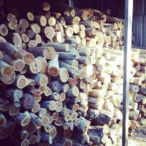 Wood Heaters Geelong | Wood Storage Tips | Tomlinson Plumbing